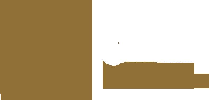 IIMA Cases